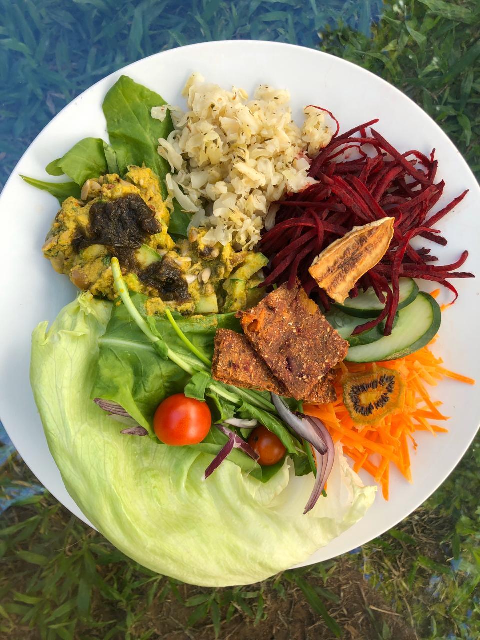 Delicias Nutritivas Antioxidantes